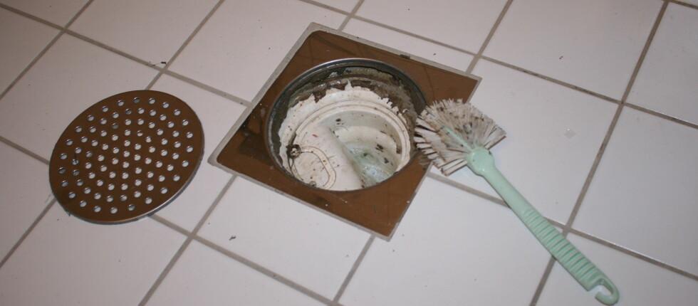 Du trenger ikke vaske så mye at du kan spise av sluket, men oppvaskbørsten er fin for å få med seg all skitten. Foto: Elisabeth Dalseg
