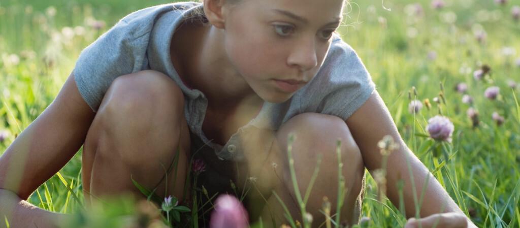 Ingenting er vakrere enn villblomster. De minner oss om barndommen. Foto: Colourbox