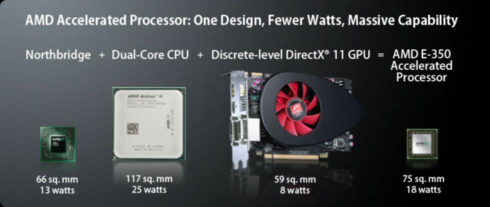 Hva er forskjellen på AMD og Intel?
