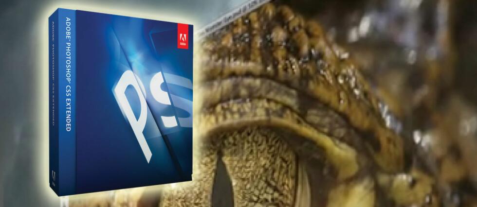 Adobe Creative Suite 5.5 kan lastes ned