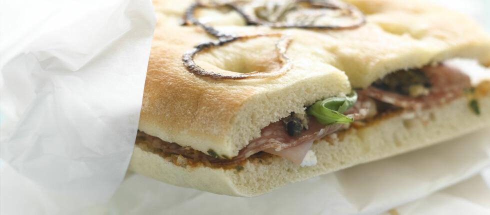 I sommer vil du trolig se mange briter spise niste når de er på tur. Foto: colourbox.com