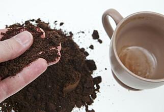 Slik får du nytte av kaffen - flere ganger