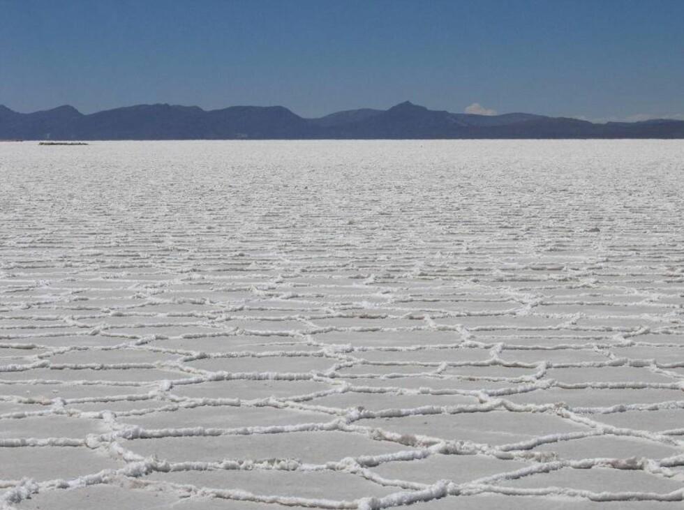 Saltørkenen i tørr tilstand. Foto: Anouchka Unel
