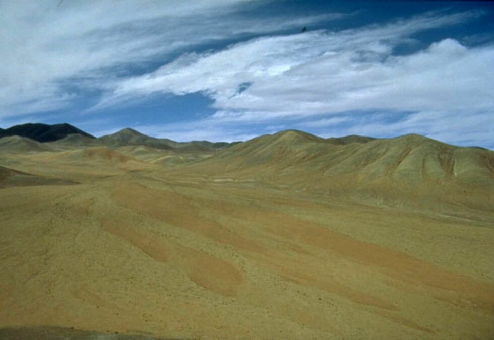 Goldt og tørt i Atacamaørkenen i Chile. Foto: Wikimedia Commons