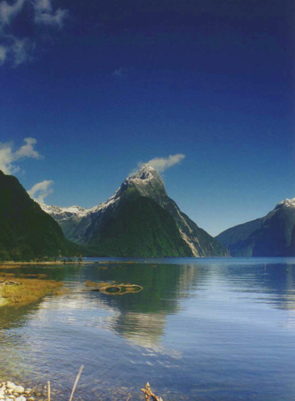 Ganske gjenkjennelig fjordlandskap i Milford Sound. Foto: Wikipedia Commons