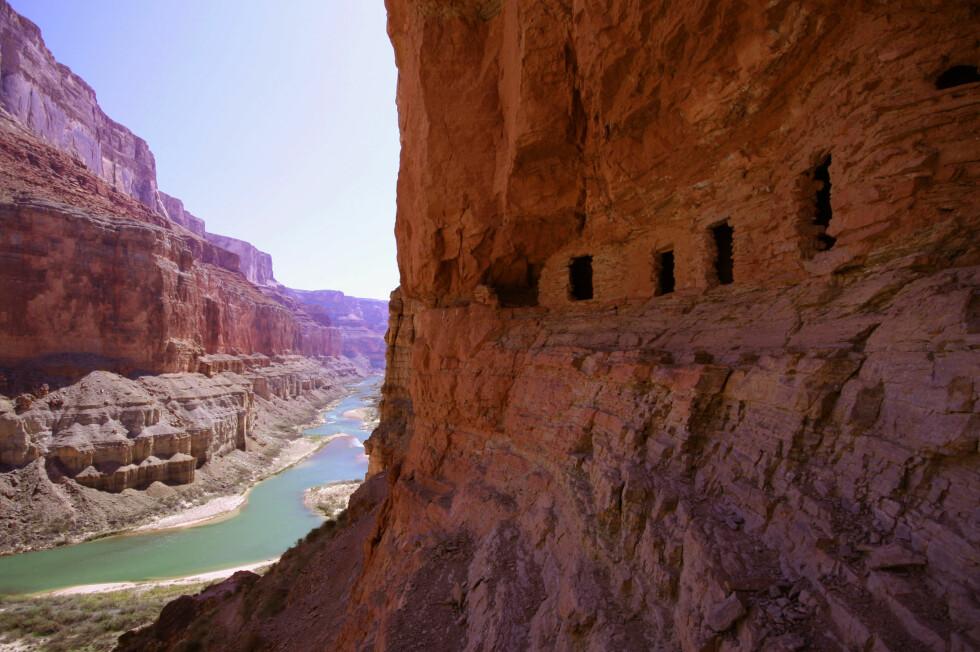 Grand Canyon  er gravd ut av Coloradoelven. Foto: Wikimedia Commons