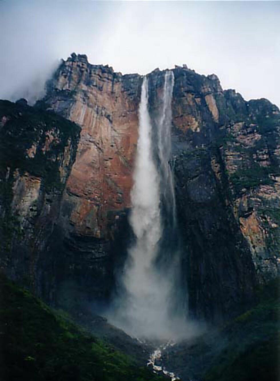 Salto del Angel er verdens høyeste fossefall. Foto: Richard Childs