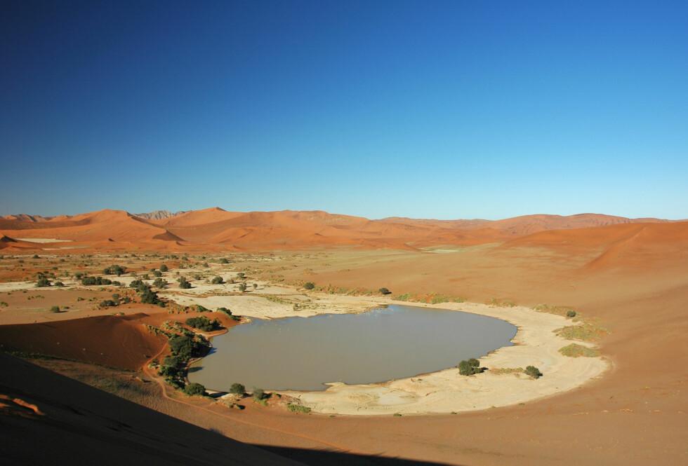 Fra Soussusvlei i Namibørkenen. Foto: Patrick Giraud