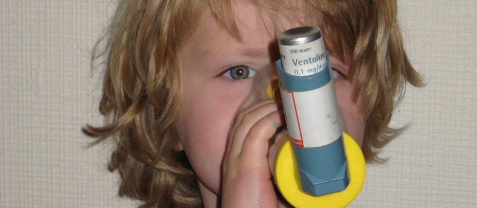 Ny forskning viser at muggsopp ikke fører til astma og allergiplager hos barn. Foto: Sintef byggforsk