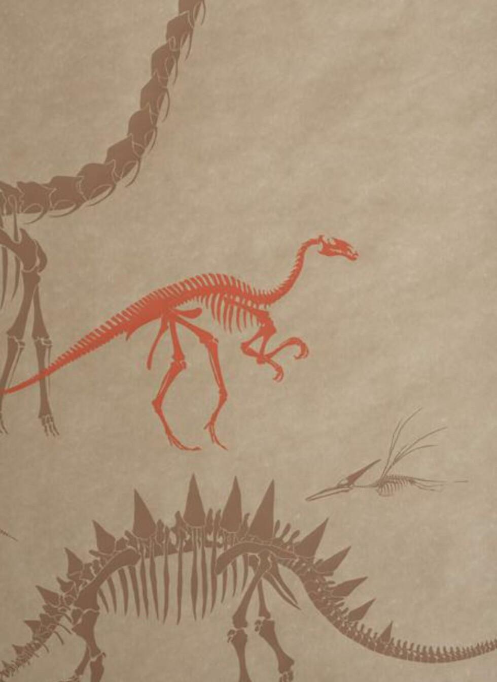 Dinosaurer kan også være fin dekorasjon. Denne er fra wallpapercollective.com. Foto: Produsent.