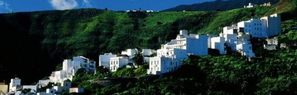 La Palma er kjent for sin vakre natur. Du kan reise hit på chartertur eller egenhånd. Foto: Star Tour