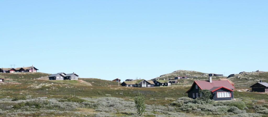 To av fem bruker kun hytten 1-4 uker i året. Hvorfor ikke tjene på den mens den står tom? Foto: Elisabeth Dalseg