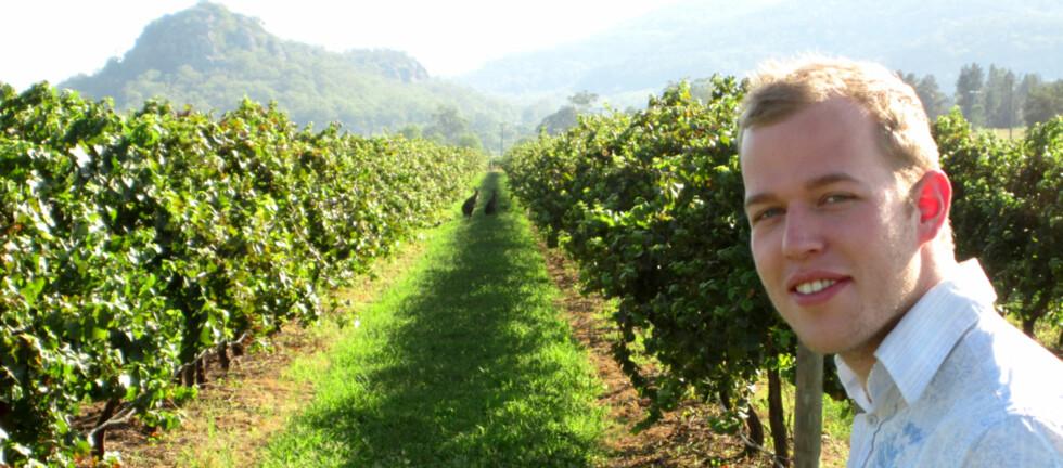 <strong><B>DRØMMEJOBB:</strong></B> - Det var ikke ett kjedelig øyeblikk, sier Aleksander Iversen etter to varme uker på vingård i Australia. Nå kan du søke om å få oppleve det samme. Foto: Privat
