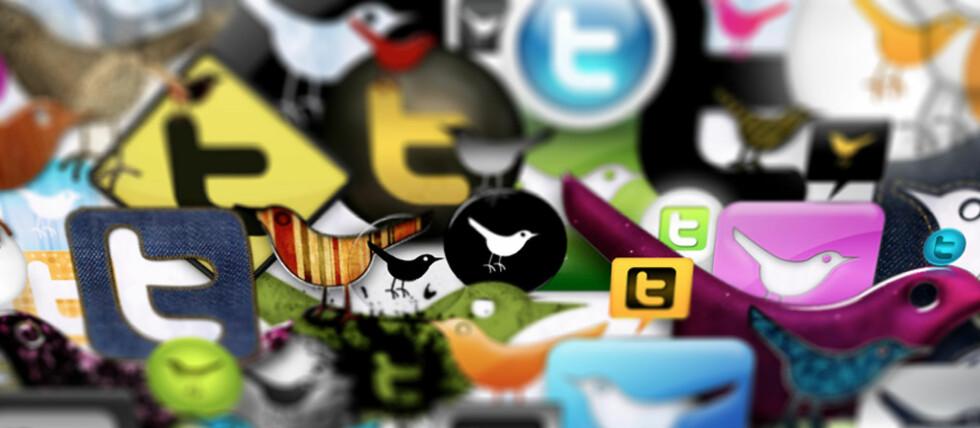 """Det finnes mange nettjenester som kan brukes mot Twitter. (Foto: """"Webtreats 53 Twitter Icons Promo Pack"""" av Webtreats, CC-BY. Remix av Pål Joakim Olsen)"""