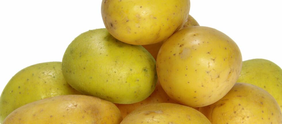Denne grønnfargen gjør poteten uspiselig. Foto: ALL OVER PRESS