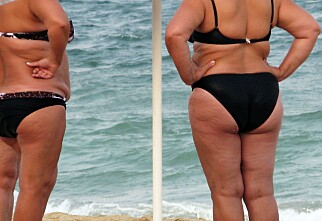 Én milliard mennesker er overvektige