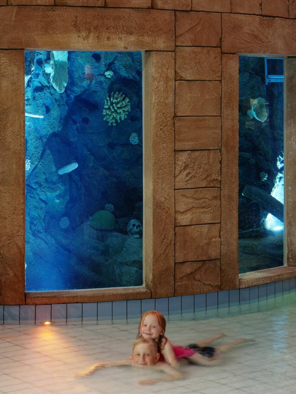 Basseng med plaskedybde. Foto: The Reef Resort