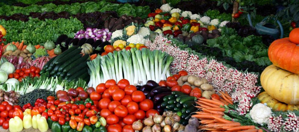 - Innholdet av de fleste vitaminer, mineraler, proteiner og karbohydrater er stort sett det samme i økologisk mat og vanlig mat. Foto: Colourbox.com