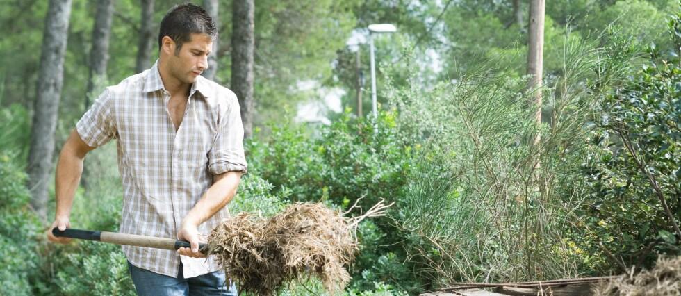 Du kan fint hyre inn litt hjelp til vårsjau, eller små hagejobber, uten at du trenger å gå gjennom den store skattepapirmøllen. Her er oppskriften. Foto: colourbox.com
