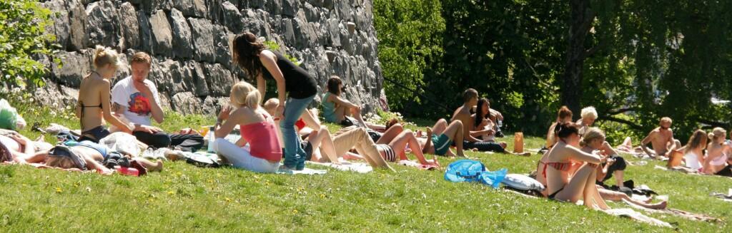 Fra en av de grønne flekkene i Stockholm en varm junidag. Foto: Stine Okkelmo