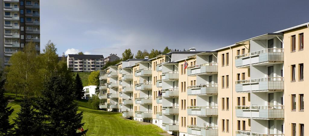 Vinter, vår, høst eller sommer?  Foto: Per Ervland