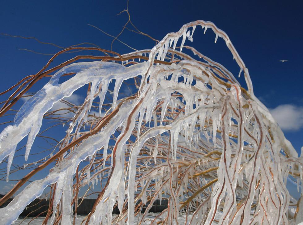 """Kjøper du et polariseringsfilter til speilreflekskameraet ditt, fjernes reflektert lys, og konstrastene blir større, spesielt i himmelen. Istapper, frost og den slags egner seg også godt som vintermotiver. (Foto: <a href=""""http://www.flickr.com/photos/laszlo-photo/426155665/"""">""""Eerie"""" Ice</a> av <a href=""""http://www.flickr.com/photos/laszlo-photo/"""">Laszlo Ilyes</a>, <a href=""""http://creativecommons.org/licenses/by/2.0/deed.en"""">Creative Commons</a>)"""