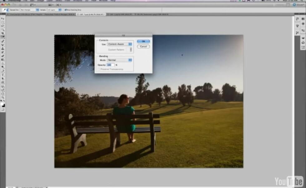 Content-Aware Fill sørger for å ta bort det du ikke ønsker å ha med på bildet, for eksempel grenene øverst til venstre, uten å etterlate spor. Foto: YouTube