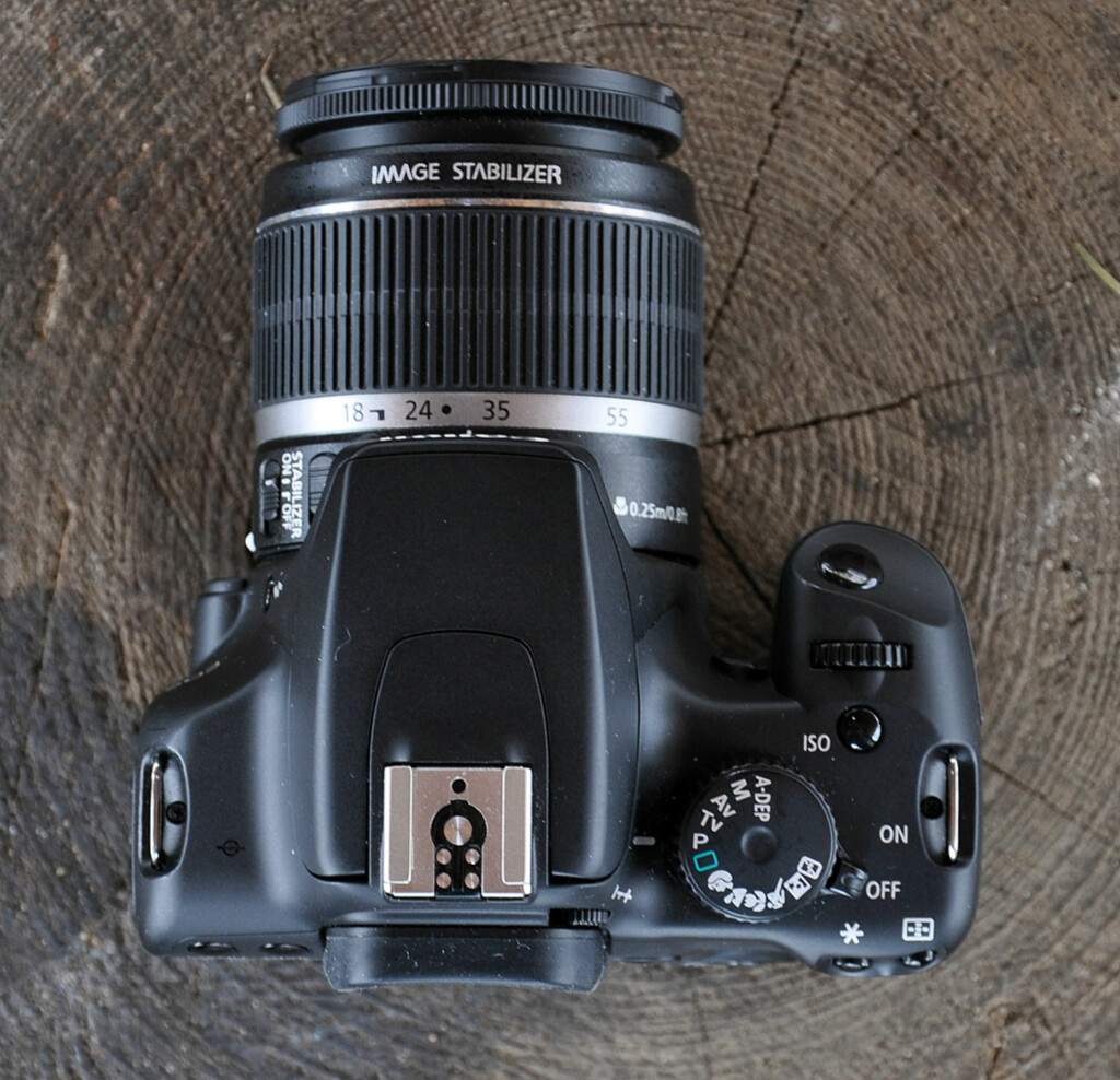 image: Canon EOS 1000D