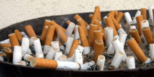 image: 81 grunner til å stumpe røyken
