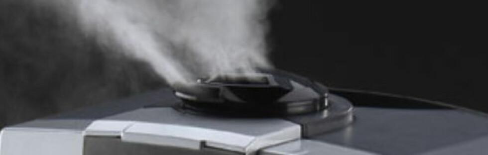 - Vi anbefaler ikke bruk av luftfuktere, sier rådgiver Rose Lyngra ved Astma- og Allergiforbundet (NAAF) til DinSide.  Foto: Produsenten