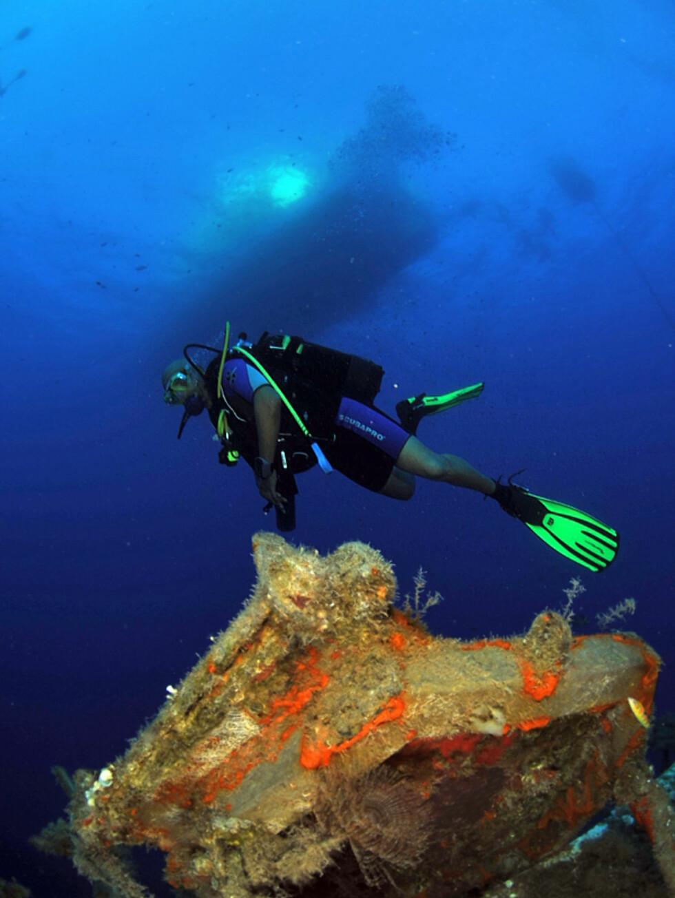 Det klare vannet på Kypros gjør dykkingen til en flott opplevelse.  Foto:  Louis Tsiakkiros, Aphrodite 2009