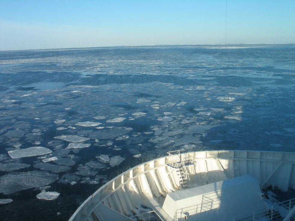 Slik så det ut utenfor Hvaler onsdag ettermiddag. Foto: Harald Bråthen
