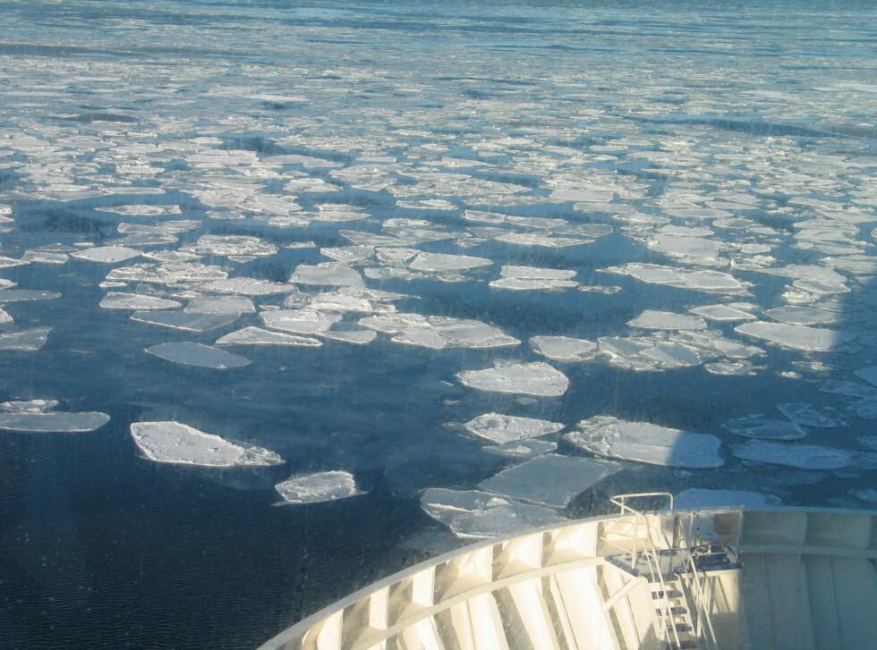 Det er noe mindre is enn det var for en ukes tid siden. Foto: Harald Bråthen