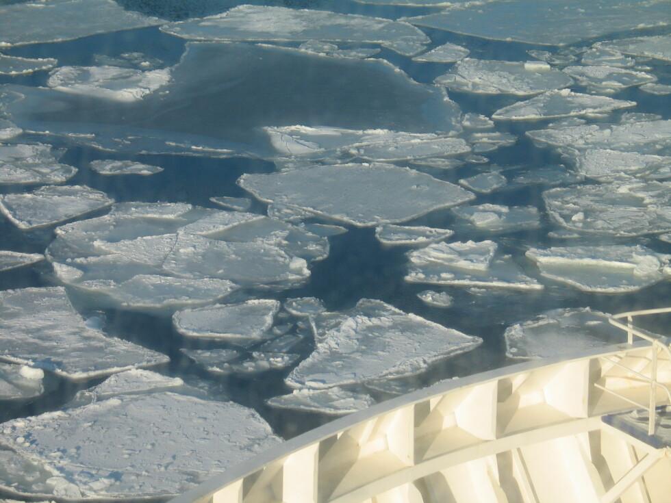 På det meste var det målt 40 cm tykk is i Oslofjorden. Nå er tykkelsen mindre. Foto: Harald Bråthen