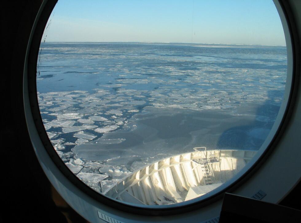 Isen er ikke noe problem for Stena Saga, som er bygget for å forsere is på opptil én meters tykkelse. Foto: Harald Bråthen