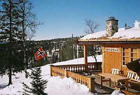 Denne hytta i Engerdal koster 7.000 kroner i vinterferien, og har sengeplass til ti. Foto: Norgesbooking