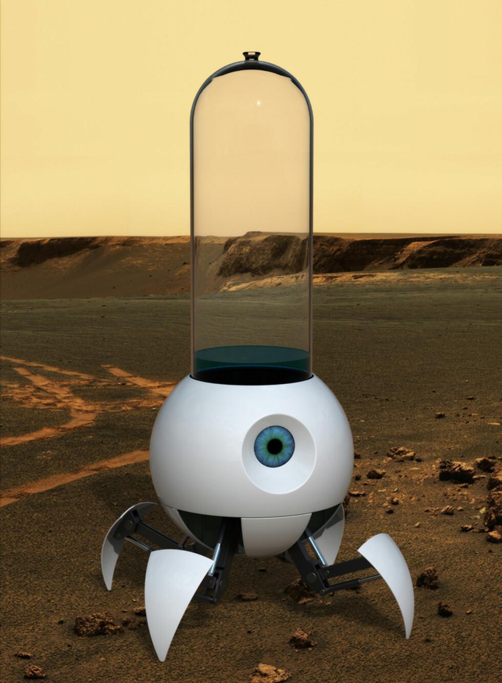 Le Petit Prince av Martin Miklic, Tsjekkia. Finalens siste bidrag er noe for seg selv. En hybrid av en robot og et drivhus, skal gro planter på Mars, slik at mennesker en gang skal kunne kolonisere den røde planeten. Plantene skal spire inne i en glassylinder i roboten, for så å planntes på et optimalt sted på planeten.