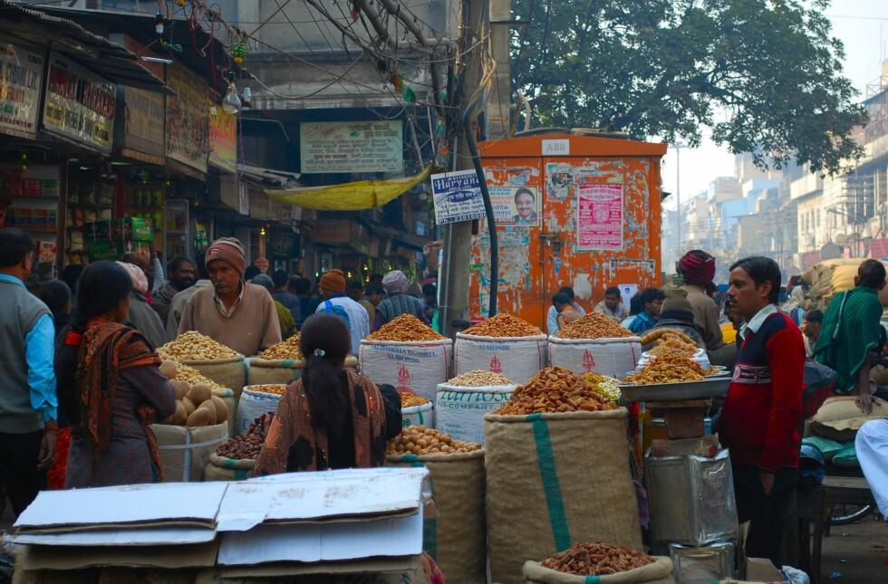Indiske byer er et virvar av trafikk, mennesker og dyr. Fascinerende og fulle av inntrykk. Livets spillefilm utfolder seg på alle kanter. Foto: Thomas Helseth Aastad