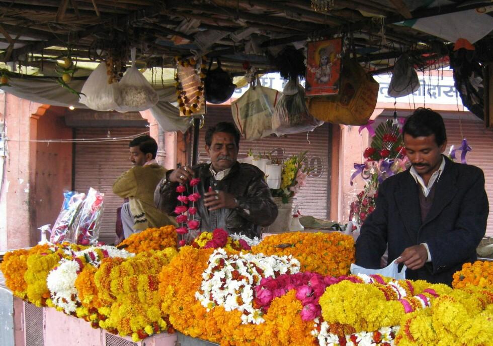 Blomstermarkedet i Jaipur. Hit kommer hindusitene for å kjøpe blomsterkranser de gir til gudene. Foto: Stine Okkelmo