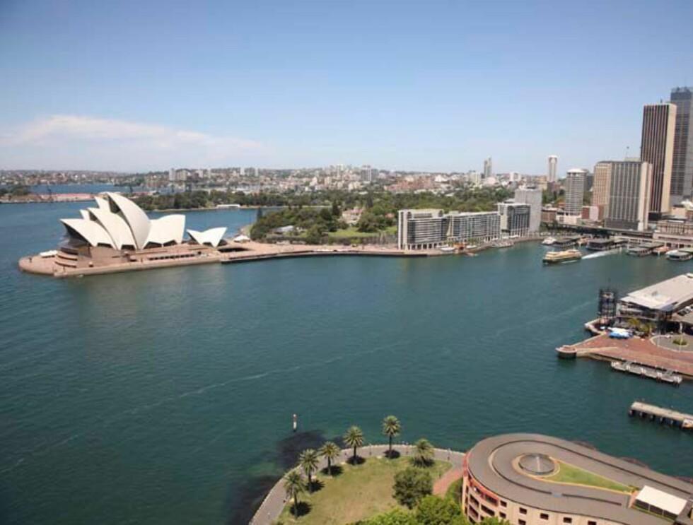 Sydney, selvsagt. Foto: Hotels.com