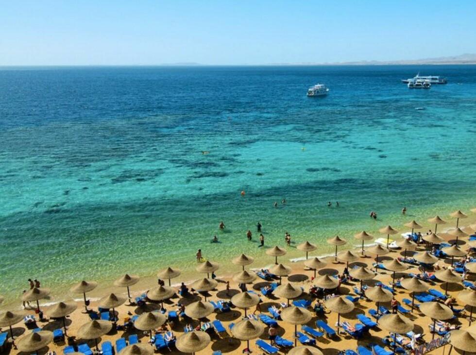 Sharm el Sheiks klare vann innbyr til badeliv og snorkling. Foto: Hotel Fanara/Star Tour