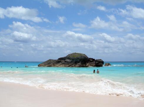 Bermuda er kjent for sin rosa sand.    Foto: Phil Kelsch