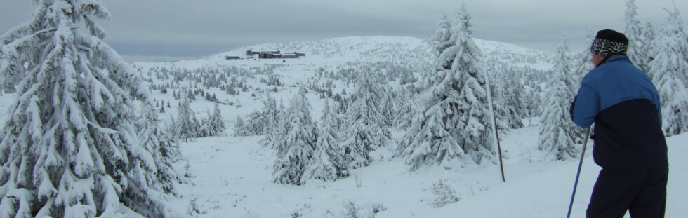 Så flott er det på fjellet nå. I bakgrunnen skimtes Pellestova og toppen av Hafjell. Foto: StineOkkelmo