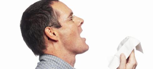 Svineinfluensa: Hva lurer du på?