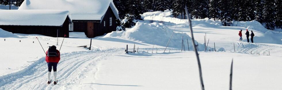 Hytter i den norske fjellheimen er ettertraktet, både av nordmenn og utlendinger.  Foto: colourbox.com