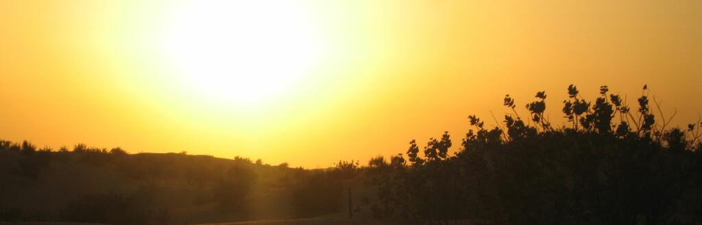 Må du velge tror vi at ørkenturen i Dubai bør tas på ettermiddagen. Da får du med solnedgangen som farger ørkensanden gyllen, og dessuten unngår du heteslag. Foto: Karoline Brubæk