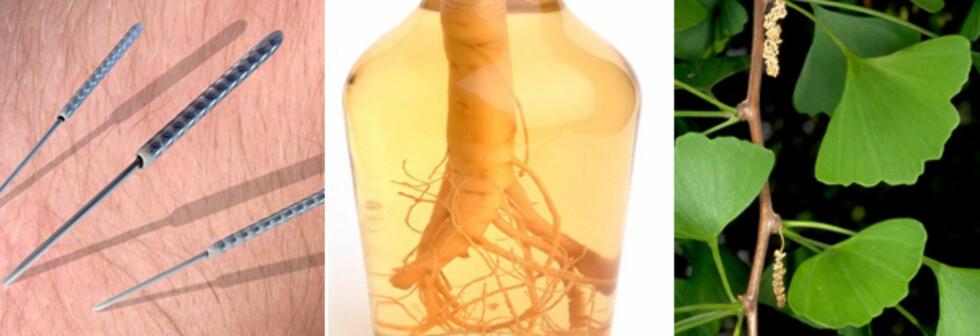 NATURLIG: Akupunktur, ginseng og tempeltre (gingko) skal visstnok hjelpe mot impotens. Men virker det? Foto: Science Photo Library