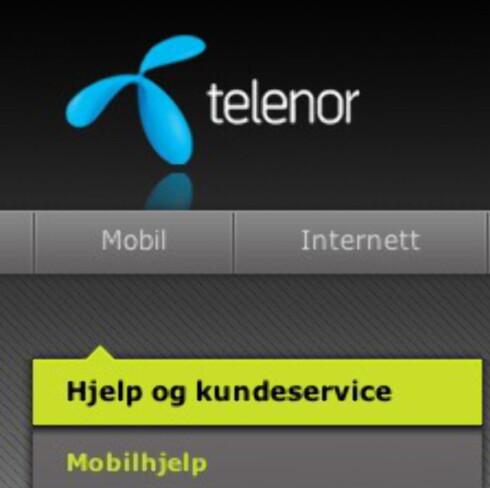 MINST RISIKO: Hvis du ikke har helt orden på mobilabonnementet, og ikke har dataplan, har Telenor lavest makspris per dag for datatrafikk.