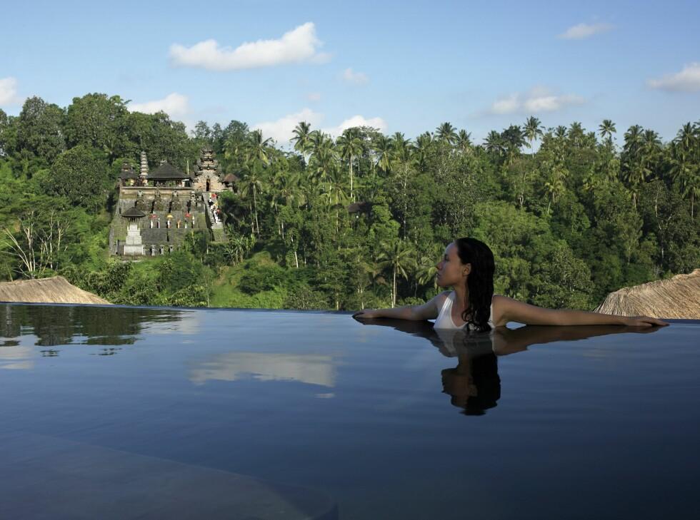 Utsikt fra bassenget på Ubud Hanging Gardens. Foto: Ubud Hanging Gardens