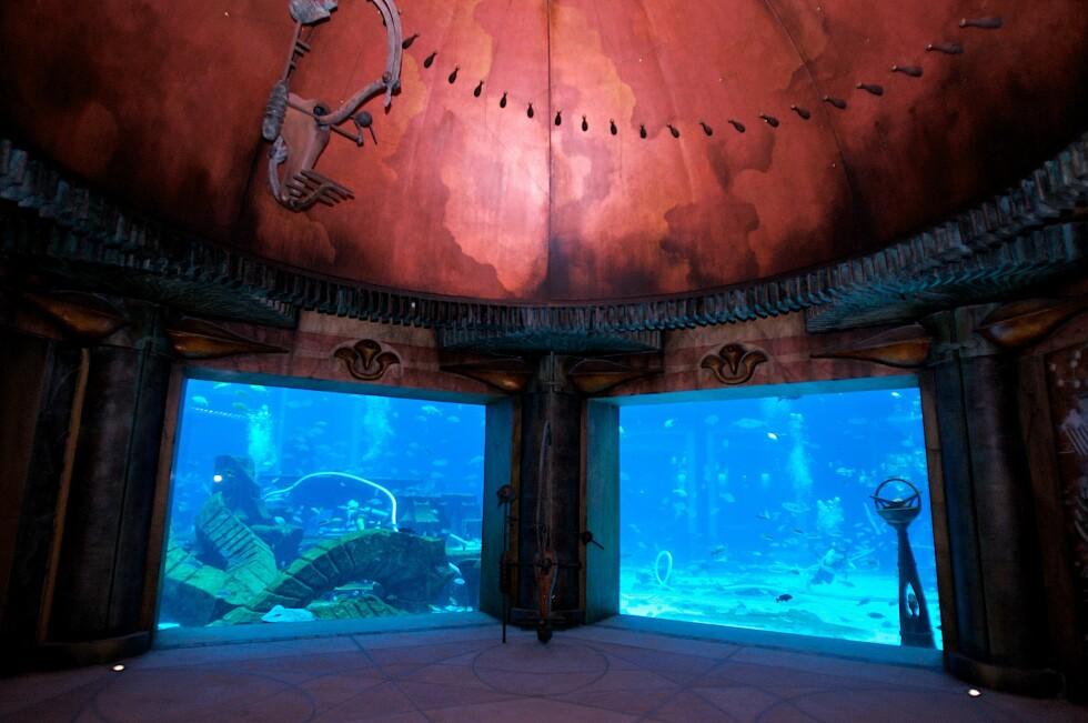Undersjøisk akvarium på Atlantis i Dubai. Foto: Atlantis, The Palm
